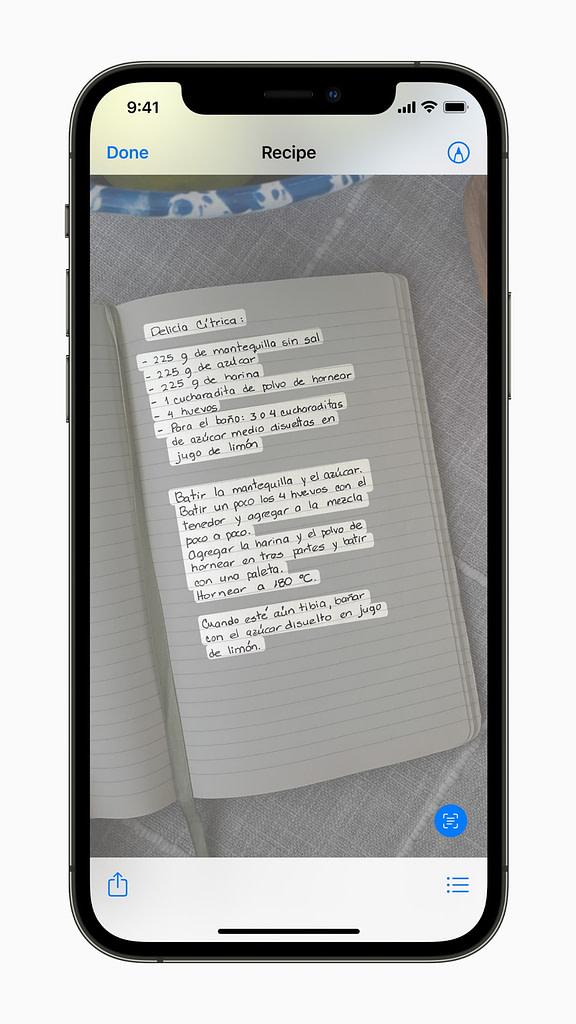 Live Text Quicklook